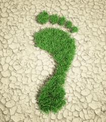 earth footprint